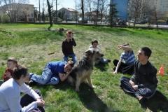 belchatow 2011