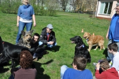phoca_thumb_l_2012.04.26_4