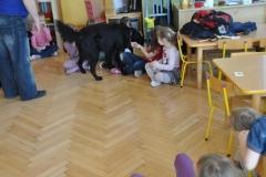 phoca_thumb_l_przedszkole-nr-7-w-piotrkowie-tryb_016