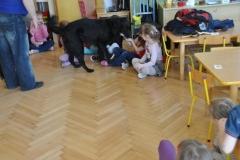 phoca_thumb_l_przedszkole-nr-7-w-piotrkowie-tryb_017