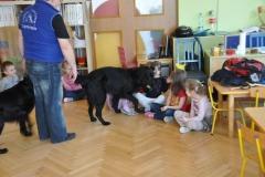 phoca_thumb_l_przedszkole-nr-7-w-piotrkowie-tryb_018