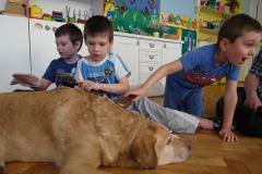 dogoterapia-przedszkole-specjalne-nr-1_000
