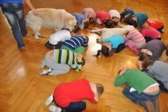 przedszkole-urszulaskie_004