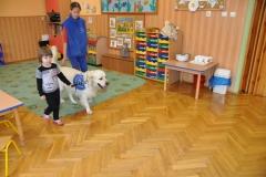 przedszkole-urszulaskie_007