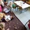 phoca_thumb_m_przedszkole-w-burdzewie_003